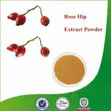 Natural & Pure Rose Hip Extract Powder, Rose Hip Extract, Rose Hip Seed Oil