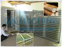Commercial vegetable and fruit and Green tea drying machine