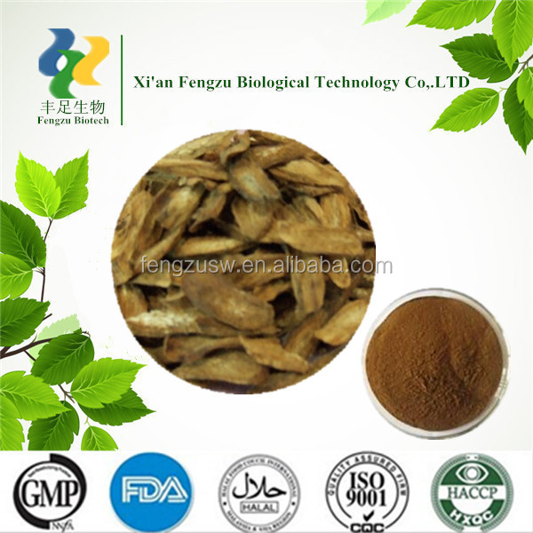 GMP Standard Manufacturer Supply Competitive price Burdock Root Extract powder 10%~40%