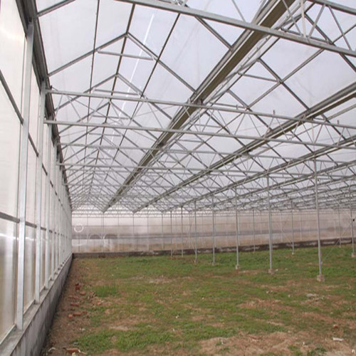 Low cost 6.0mm thickness 4mm twin wall polycarbonate greenhouse for construction