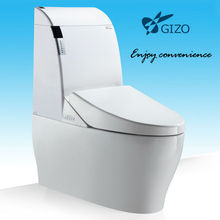 Bathroom Flush Toilet Automatic Electric Siphon WC Pan