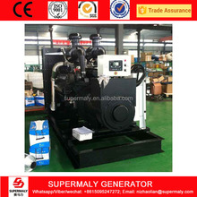 CE Approved 300kw diesel generator by Shanghai engine