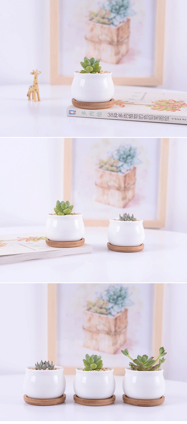 3 Inch Small Round White Succulents Ceramic Pots With