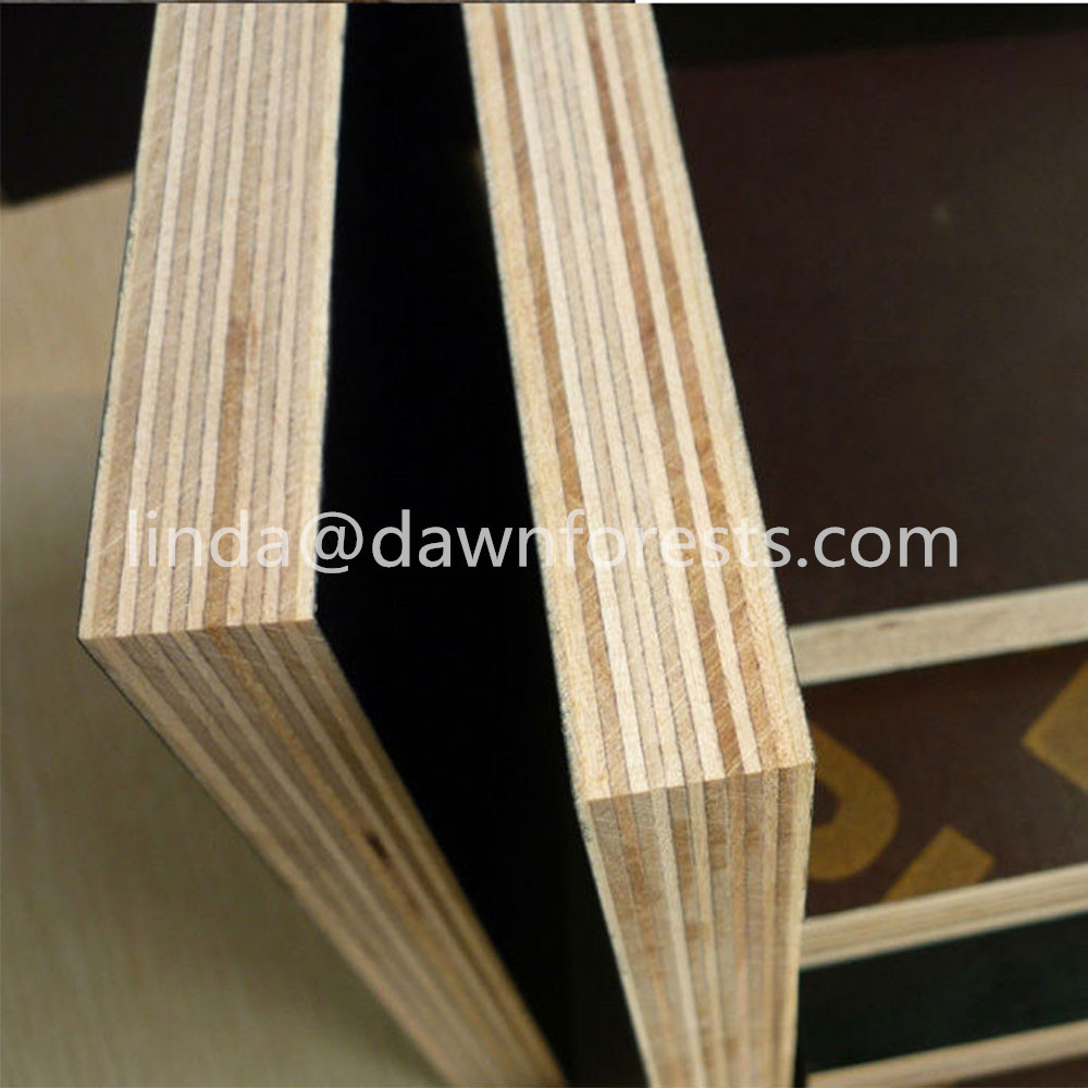 17 mm Black film faced plywood for Construction use