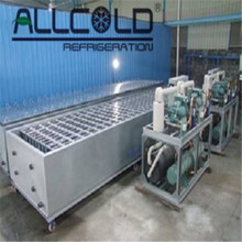 Industrial ice block making machine for sale(ABM-10T)