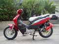 BUSINESS TYPE motorbike 110CC CUB MOTORCYCLE commuter urban bike