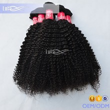 2016 6A Top Quality Natural Color No Tanglel No Shedding Unprocessed Virgin Brazilian Human Hair Afro Kinky Curly