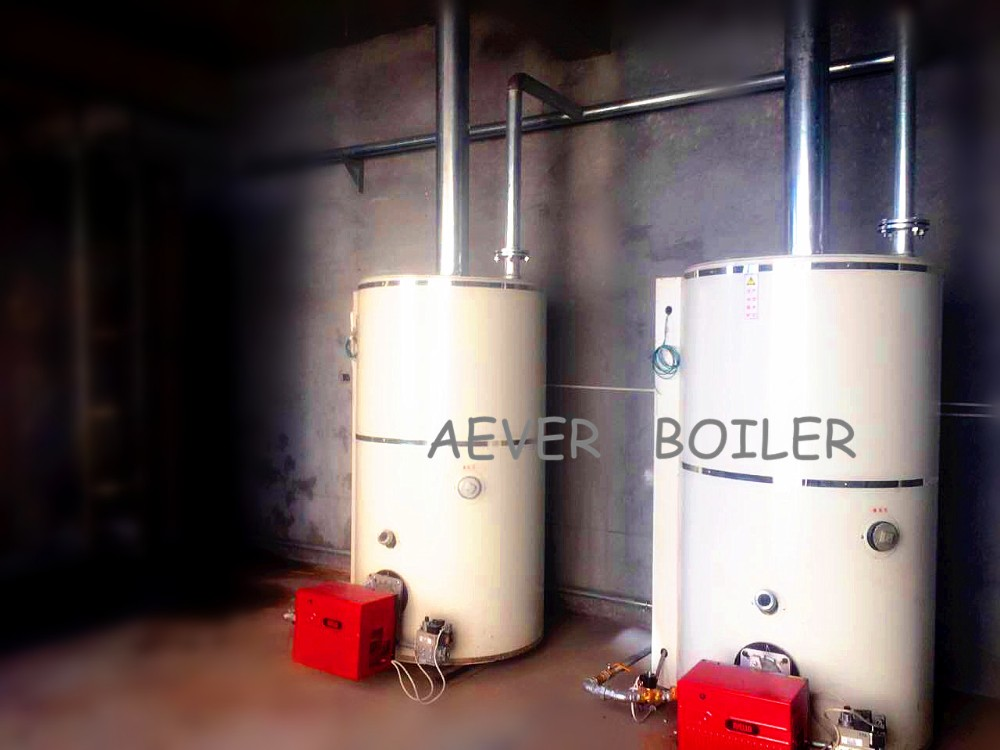 top sale diesel 700L gas boiler for hot water from China supplier