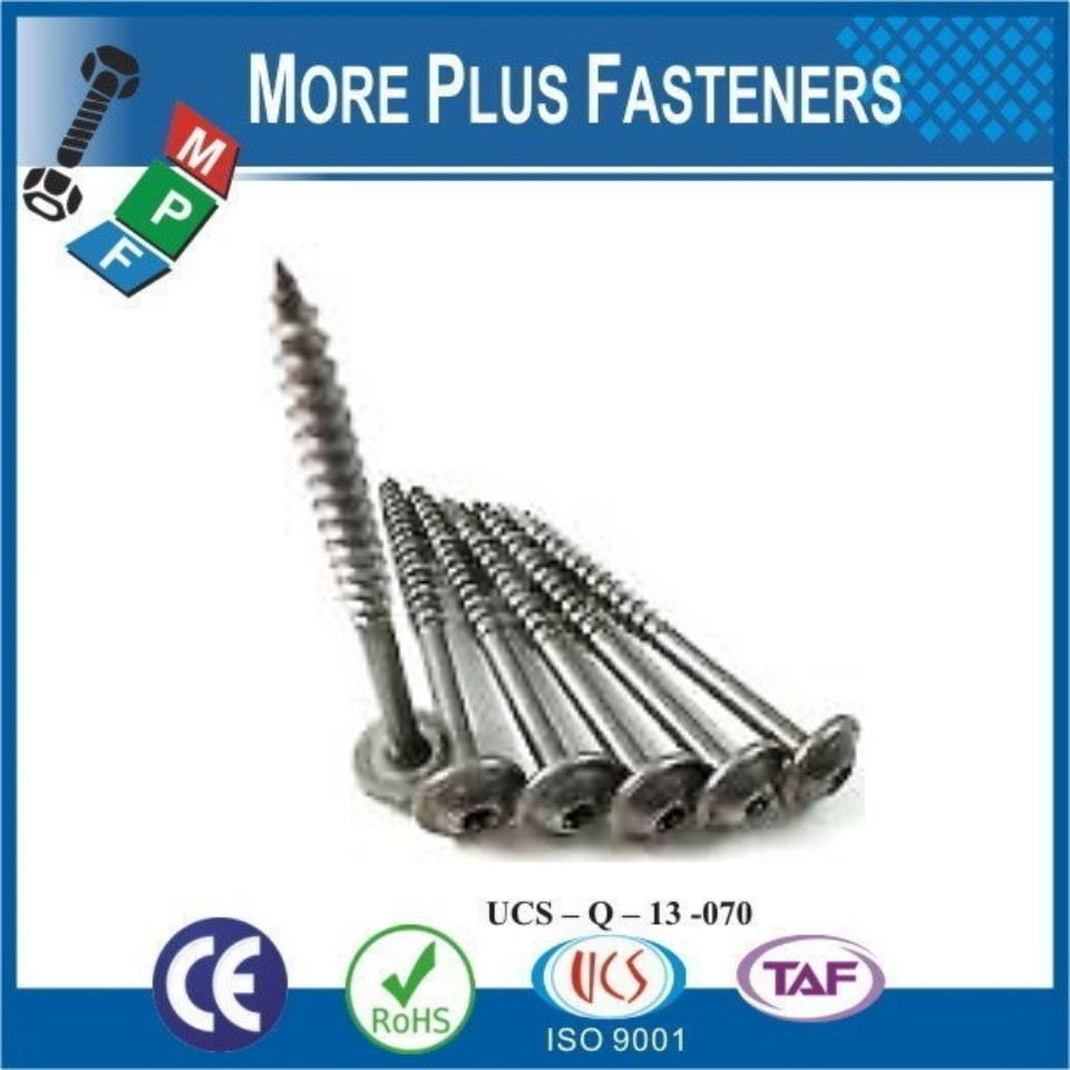 Made in Taiwan Yellow Zinc Plated Wafer Head Timber Screw Zinc Plated Button Head Timber Screw