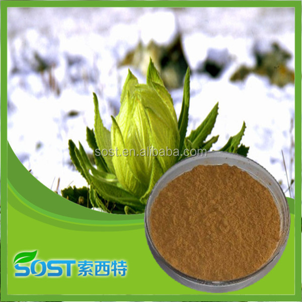 china supplier snow lotus extract powder