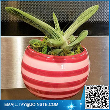 Striped Red and Pink Magnetic Ceramic Succulent Planter home offic decor flower planter , flower pot ceramic