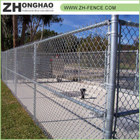 Hot selling Powder Coated Metal Frame Material High Quality 50*50 chain link fence