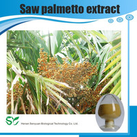 Saw palmetto extract of the best price