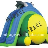 Inflatable Water Sport Game Water Slide