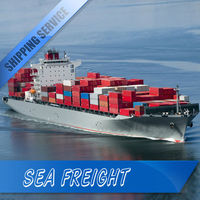 sea freight to miami departure: china fast speed safty A+