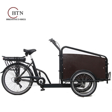 3 wheels three wheel motorcycle electric bicycle/cargo tricycle /electric cargo bike