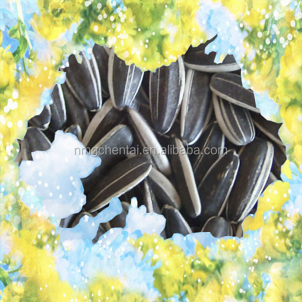 2017 Chinese bulk striped hybrid cheap confectionery sunflower seeds