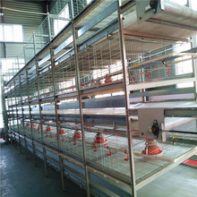 China best broiler chicks rate broiler battery cage for sale with broiler poultry farm house design