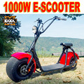 China Big Wheel Electric Scooter 1000w Citycoco