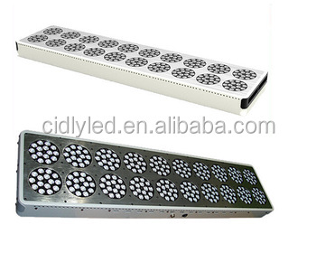 CIDLY 600W led grow light with switchable spectrum can replace 1000w hps grow system