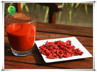 Bulk Goji Berries Wholesale Goji Berry- Ning Xia,China