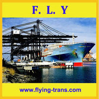 Dedicated trust worthy considerate service special classical bulk cargo ship to nicaragua