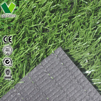 Products China High Quality Football Grass