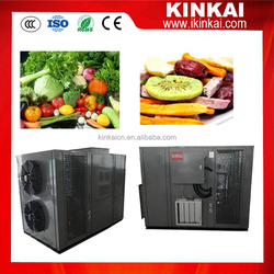 Automatic vegetable and fruit freeze dehydrator machine environment-friendly