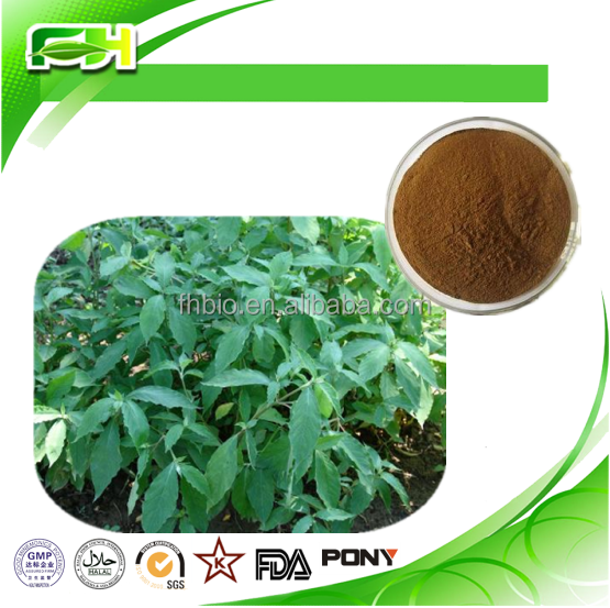 Achyranthan 20%-40% Polysaccharide Achyranthes Bidentata Extract powder