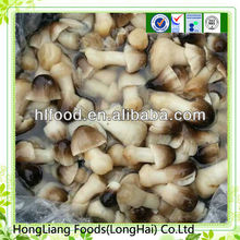 good quality Fresh whole peeled straw mushroom in drum