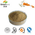 GMP Certified Seabuckthorn Extract 10:1,20:1