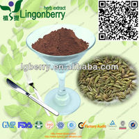 Factory supply fennel seed extract
