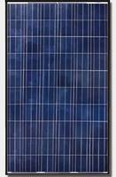 Canadian Solar CS6P-250P 250W Poly Blk/Wht Solar Panel