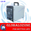 Portable 2g ozone generator for removing odor in car and hotel