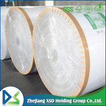 Duplex paper board in sheet/reel from china industry