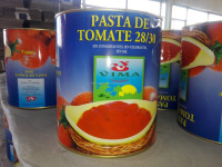 China supplier/canned food factory/tomato concentrate /fresh tomatoes export