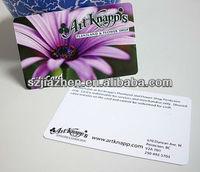 beatiful halloween PVC gift card