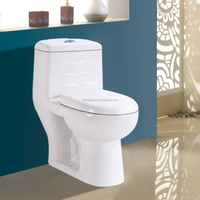 sanitary ware manufacturer,high quality white ceramic toilet,toilet with built in bidet