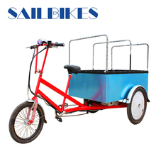 304 stainless steel spokes electro-tricycle