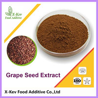 Natural Organic Grape Seed Extract Proanthocyanidin 95% polyphenols 70%