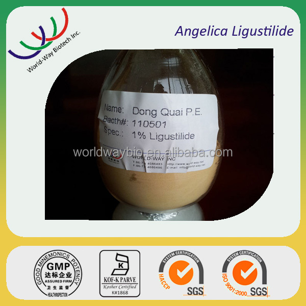 free sample HACCP GMP KOF-K FDA certified China manufacturer 100% natural angelica root extract hot sale 1% 1.5% ligustilide