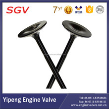 Car spare parts--engine valve(intake & exhaust) for CD4/F22