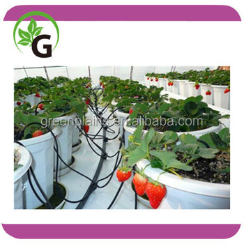 irrigation arrow dripper for pot plants irrigation drip spider