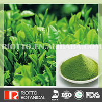 Pure Natural Green Tea Extract /Tea Polyphenol, Catechin