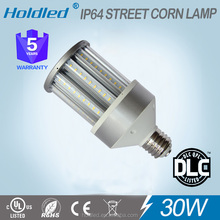OEM blue ring 30w patented led corn light for street light