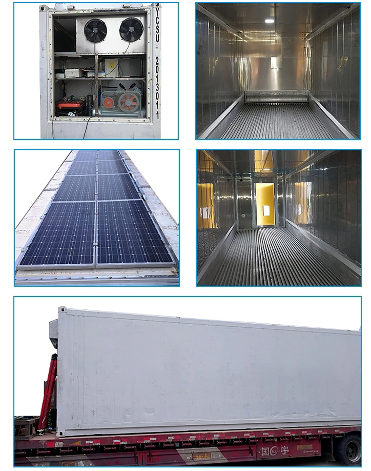 20ft 40ft Refrigerated Reefer Container