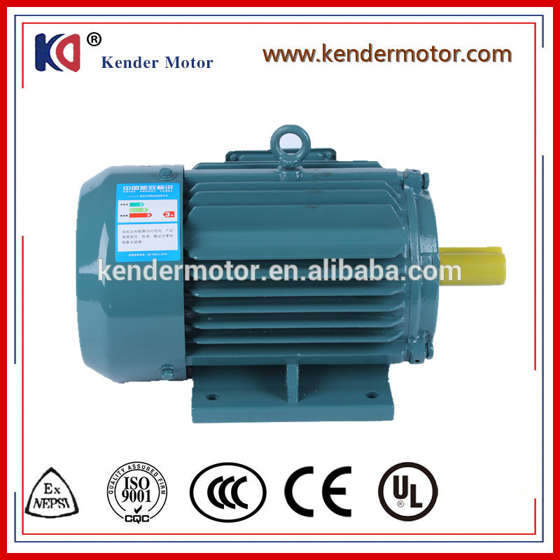 Asynchronous Induction Electrical Ac Motor With Factory