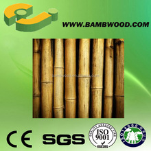 Suitable Traditional Saw Bamboo Cane For Trees Supporting Engineered