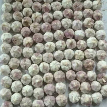 China Top 8 Manufacturer Supplier 2016 Fresh Garlic for Indonesia, Malaysia, Brazil