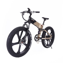 mtb customization electric bike beach cruiser , fat tire beach cruiser